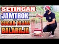 Setingan Jamtrok Cucak Hijau Balaraja  Mp3 - Mp4 Download