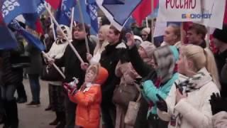Митинг на День народного единства 2016 года в Воронеже