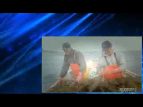 Dirty Jobs S03 E11 Special Effects Artist