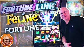 4 HUGE JACKPOT$ on Fortune Link! 🙀Feline Fortune BONUS WINS!