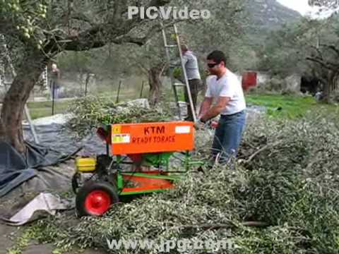 olive gathering machine