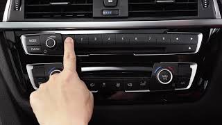 BMW X2 - Programmable Memory Buttons