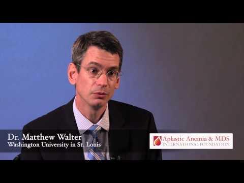 Research Grant Recipient: Dr. Matthew Walter