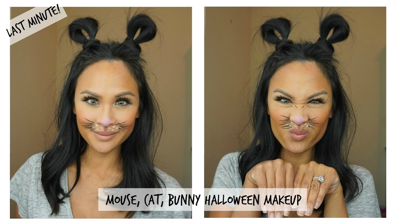 Easy To Do Cute Mouse, Cat, or Rabbit Halloween Makeup - Last Minute Look