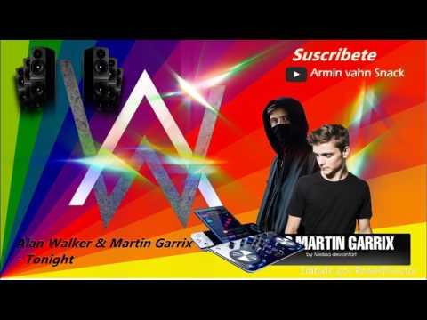 Alan walker & Martin Garrix-Tonight