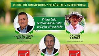 Hablemos de Cebú: 📹Primer Ciclo de Vacunacion 2020 - Estomatitis Vesicular