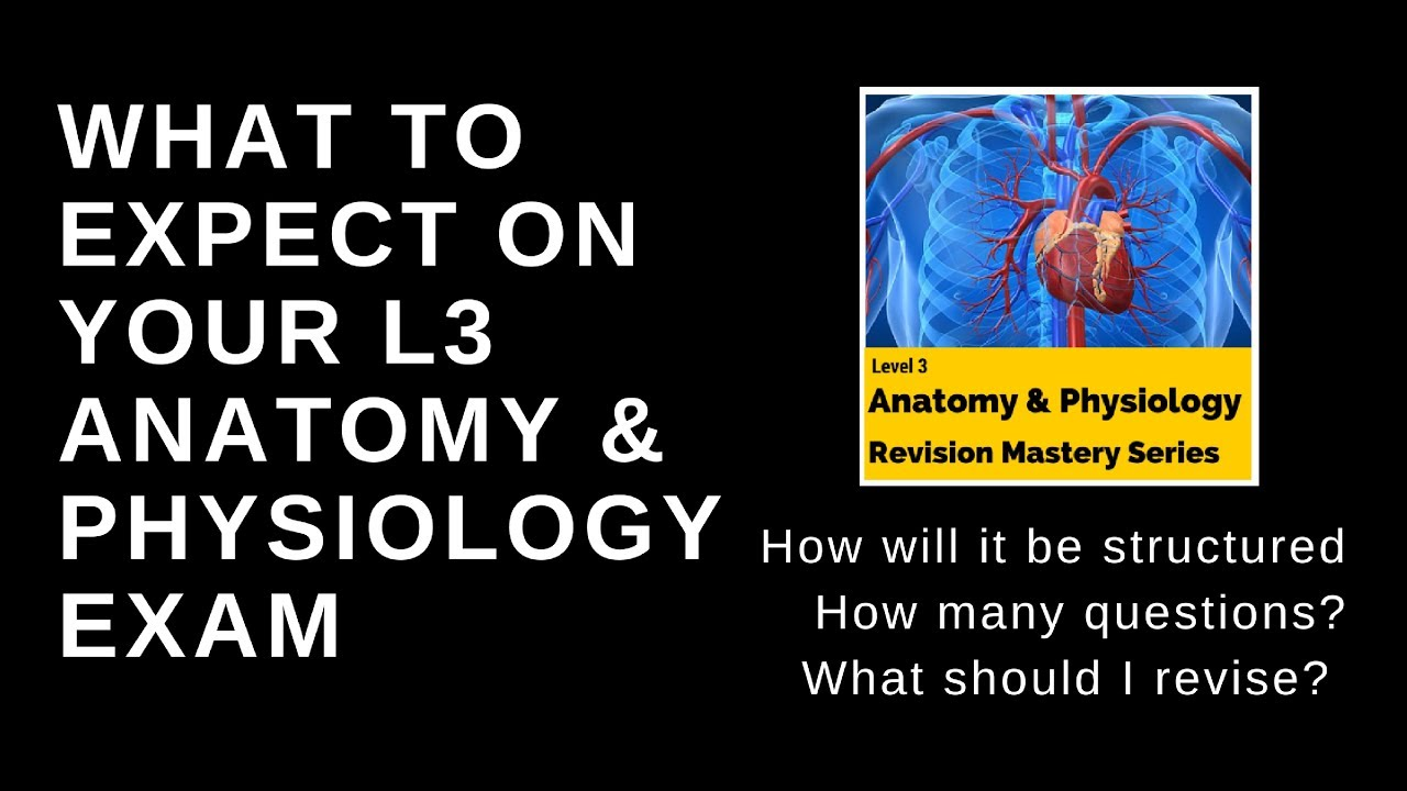 What to expect on your level 3 anatomy and physiology exam? - YouTube
