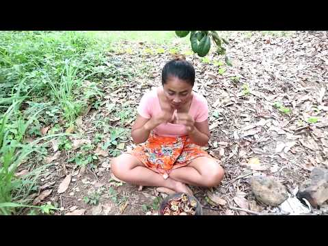 Survival skills: Find crabs in the water flow for food – Cooking crab on clay eating delicious