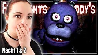 Pizzeria des SCHRECKENS! 🐻 Nacht 1 & 2 │ Five Nights at Freddy's