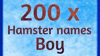 200 x Hamster Names BOY | 200 x Hamster Namen JONGEN