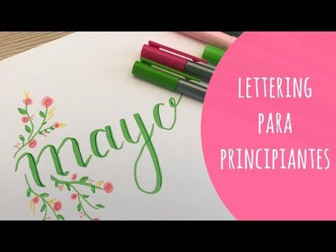 Lettering Para Principiantes Florituras Sombras Y Flores Faciles