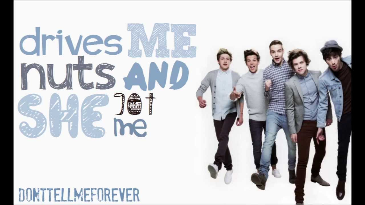 One Direction Just Cant Let Her Go Best Lyric Video Demo