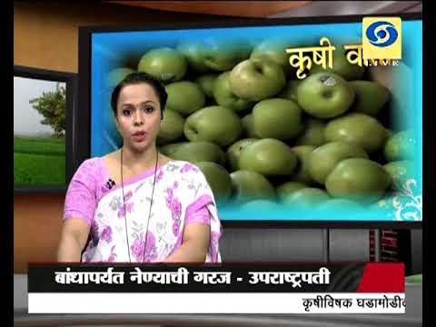 Krishivarta Bajarbhav - 25 June 2018 - कृषीवार्ता बाजारभाव