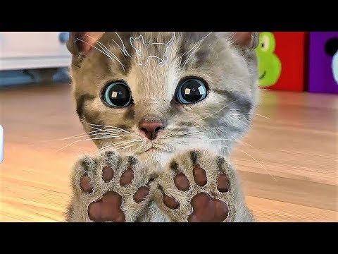 Cat Cartoon Kids Game - Play And Explore The Little Kitten Room - Funny Gameplay Video
