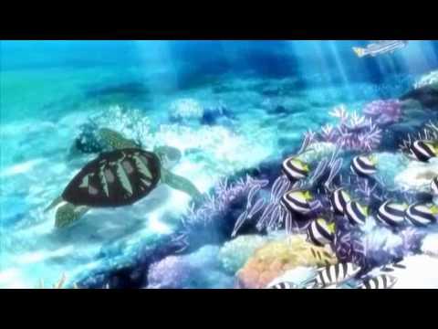 AMV Various Anime Aquarium