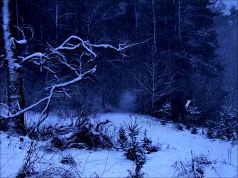 First Snow / Winter Nights - Al Di Meola mp3