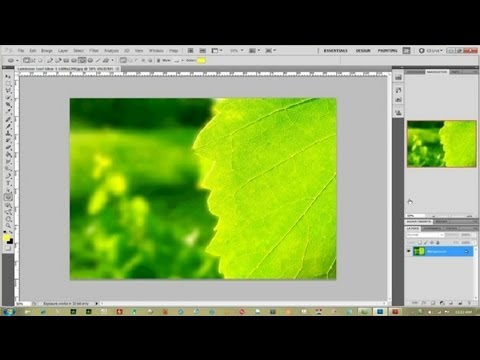 How To Adjust The Transparency In Photoshop Photoshop Help Youtube