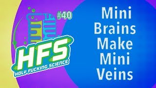 HFS Podcast #40 - Mini Brains Make Mini Veins