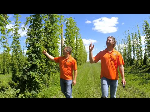 Exclusive Behind-the-Scenes Look: Building The Farmery Estate Brewery!