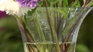 видео Как сохранить розы в вазе дольше.