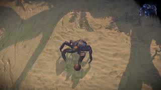 Path of Exile: Coconut Crab