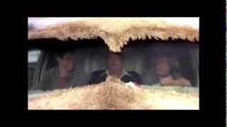 Dumb and Dumber - The most annoying sound in the world - 10 Minute Remix