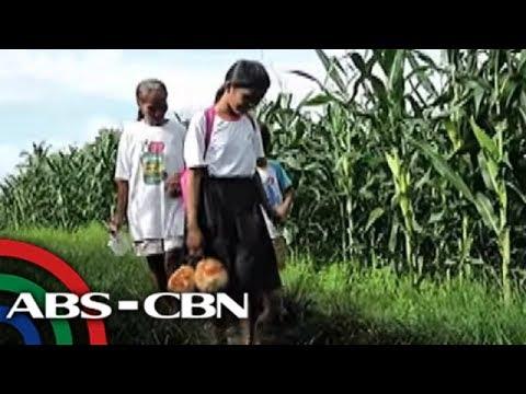 TV Patrol: Ilang estudyante sa Naga, naglalako ng gulay, prutas para makapag-aral