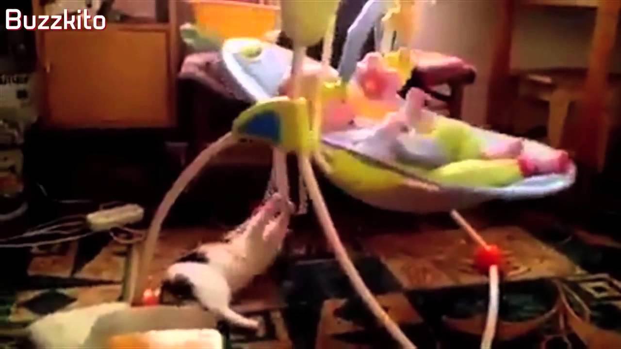 بالفيديو: قطة تؤرجح سرير رضيعة لتساعدها على النوم !