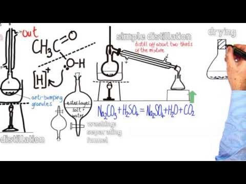 an experiment on fischer esterification of acetic acid using isopentlyl alcohol
