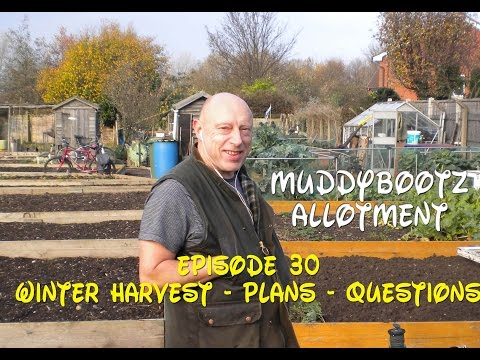 MuddyBootz Allotment #30 - Winter Harvest - Future Project Plans - Question Time