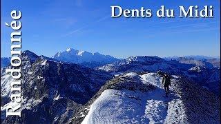 Randonnée Alpine - Dents du Midi  -  Haute Cîme 3257 m
