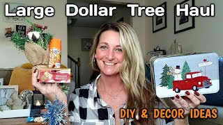 LARGE DOLLAR TREE HAUL ? All N…