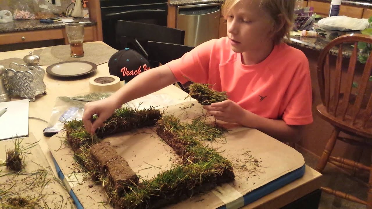 Make sod house project