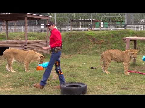 Joe Exotic's Message to Donald Trump Day 29
