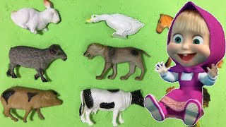 Wrong Puzzle Pnimal   sounds farm animals and names   animal toys