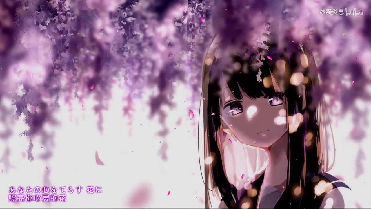 一首超好聽的日語歌-《花のうた》開口即跪 一秒淪陷