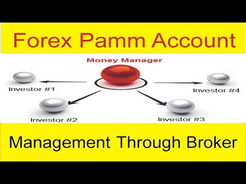 Lite forex pamm account review