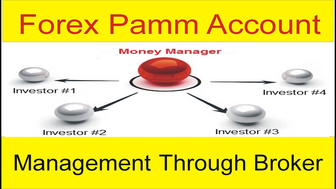 PAMM Forex Brokers - Best Forex Brokers offering PAMM accounts on blogger.com