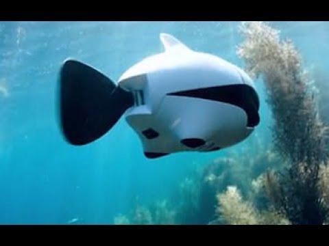 Meet BIKI the world's first bionic wireless underwater fish drone