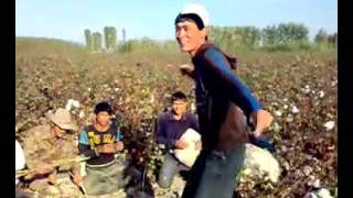 Индийский прикол -узбеки зажигают хдд 01