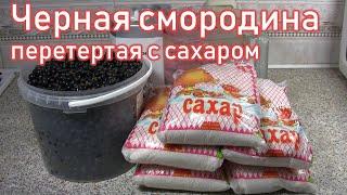 Черная смородина перетертая с сахаром - самый быстрый рецепт приготовления