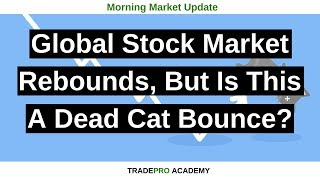 Global stock market rebounds, but is this a dead cat bounce?