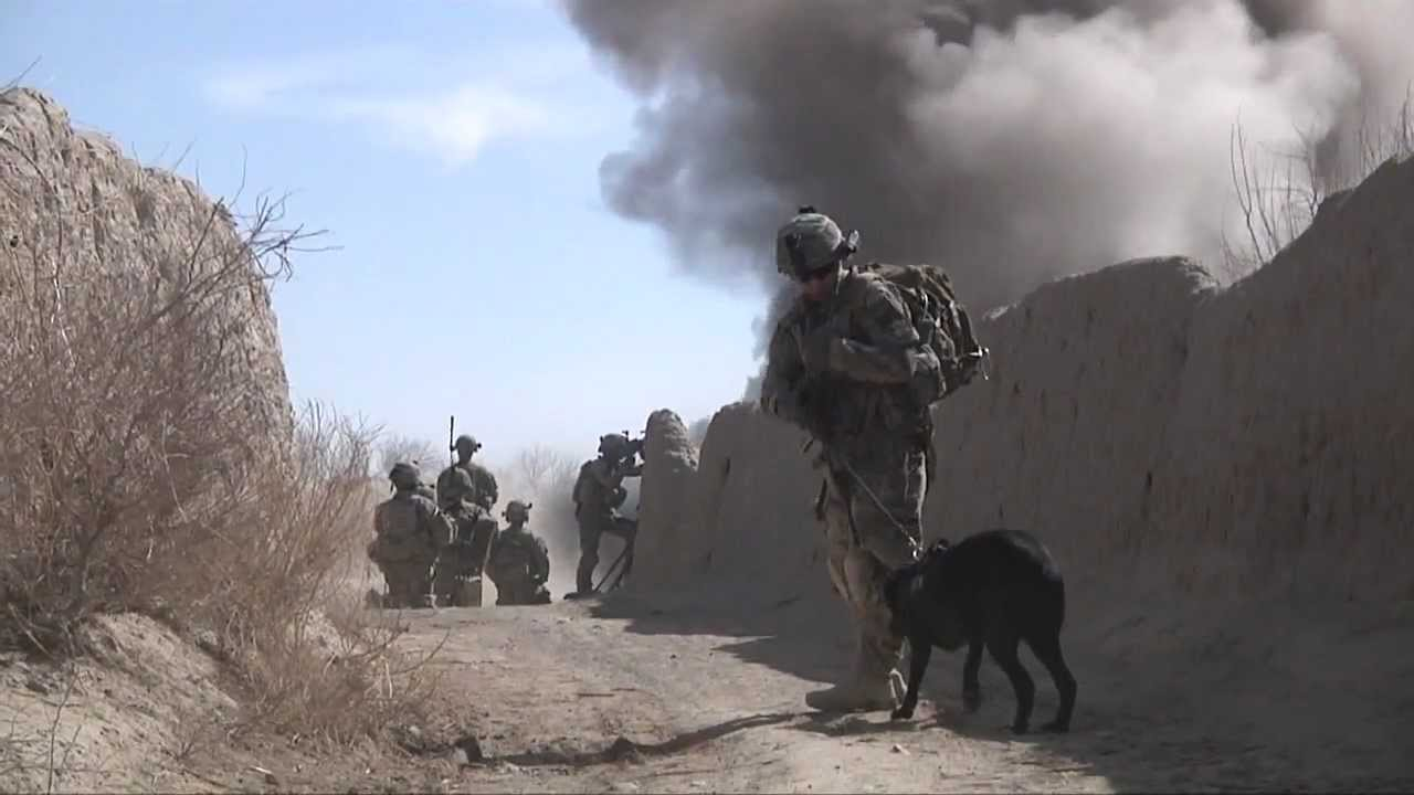 Watch Dogs Of War Free