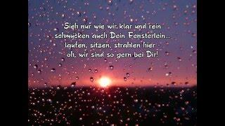 Regentropfen schicken Grüße, heut' und jeden Tag - stell' Dich ein auf Empfang......