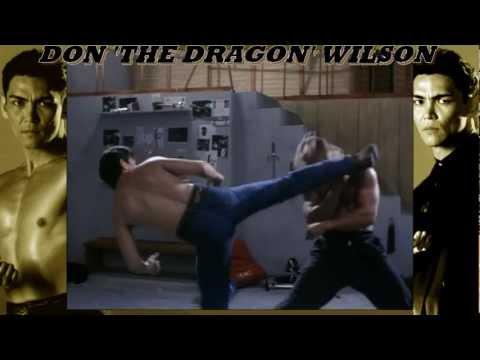 Don 'The Dragon' Wilson Tribute  2012 Remix