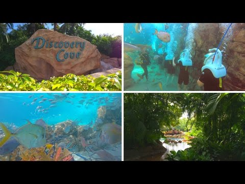 Florida Travel: Welcome to Discovery Cove, SeaWorld Orlando