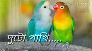 Bengali sad shayari //whatsapp status ❤❤