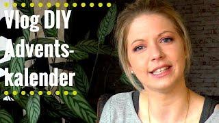 Vlog -  DIY Adventskalender für Katze und Hund
