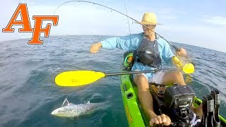 Gold Coast Mackerel Games in my new Viking Kayak 2018  EP.402