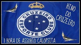 ASSOBIO CALOPSITA - HINO DO CRUZEIRO
